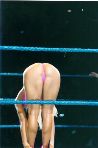 Are absolutely wwe torrie wilson nude things